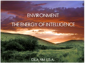 ENVIRONMENT - THE ENERGY OF INTELLIGENCE GILA, NM, U.S.A.